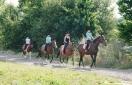 Jakie atrakcje oferuje Ośrodek Jeździecki Siedliska Janczar?