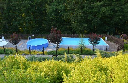 Strefa basenowa